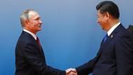 Abgestimmte Politik in der Nordkorea-Krise: Putin und Xi