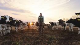 Putin, das Vieh und ich