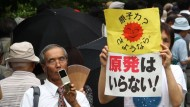 Tepco-Aktionäre fordern Atomausstieg