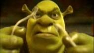 "Film-Kritik: ""Shrek 2"""