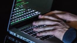 Hacker nach Klau von Politikerdaten angeklagt