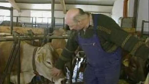"""Seehofer fordert """"faire Preise"""" für die Milch"""