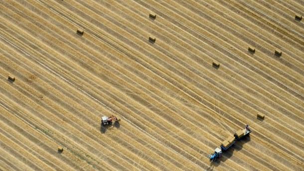 Landwirtschaftliche Flaeche in Deutschland nimmt ab