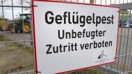 Geflügelpest-Virus H5N1: Kreis Harburg ordnet Stallpflicht an