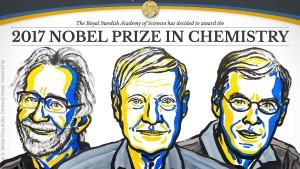 Chemie-Nobelpreis für spezielle Elektronenmikroskopie