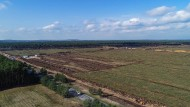 Grünheide: Blick auf die gerodete Waldfläche auf dem Gelände der künftigen Tesla Gigafactory