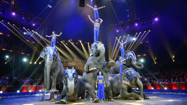Die Zirkuselefanten sterben aus