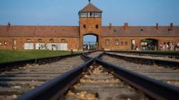 Der Holocaust passt nicht in Rassismus-Kategorien