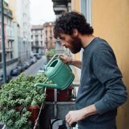 Grünes Fenster zur Welt: Auch ein kleiner Balkon ist in diesen Wochen von unschätzbarem Wert.