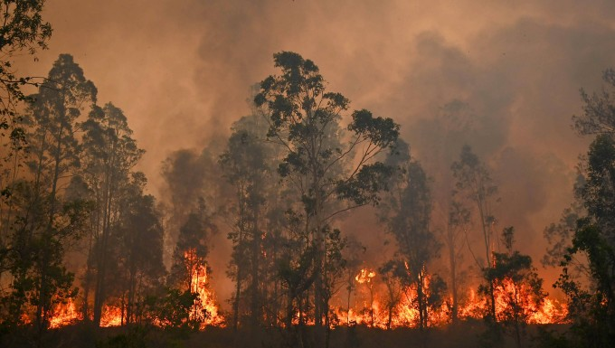 new south wales – buschfeuer