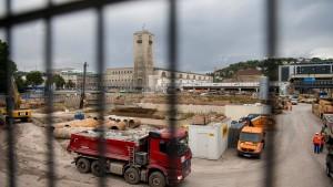 Umsiedlung von Eidechsen könnte Stuttgart 21 verzögern