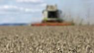 Hessische Bauern rechnen mit Gewinneinbußen