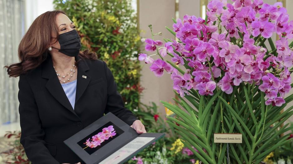 US-Vizepräsidentin Kamala Harris neben Papilionanda Kamala Harris während der Orchideentaufe in Singapur.