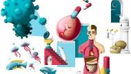 Illustration Corona und die Wissenschaft (Sonntagszeitung)