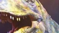 Dinosaurier erobern Großbritannien