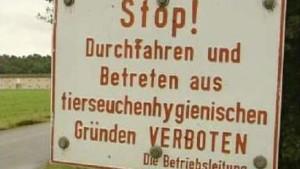 Größte Keulungsaktion in Deutschland nach Vogelgrippe-Verdacht