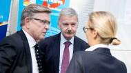 Alice Weidel, Fraktionsvorsitzende der AfD, unterhält sich Anfang April im Bundestag mit den AfD-Bundestagsabgeordneten Gerold Otten (l.) und Lothar Maier (M.).