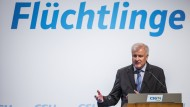 Was will Seehofer?