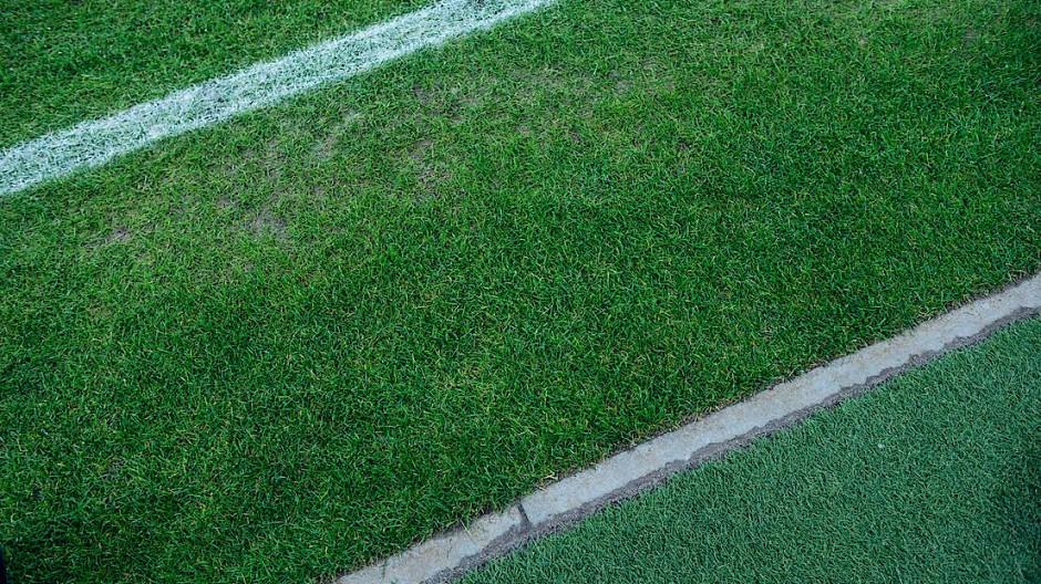 Auf den richtigen Rasen kommt es an: In Hessen musste ein Fußballspiel wegen Unkrauts abgesagt werden (Symbolbild).