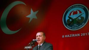Was ein Erdogan-Anhänger mit einem AfD-Fan gemein hat