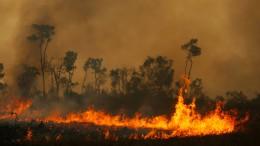 Heftige Waldbrände im Amazonasgebiet
