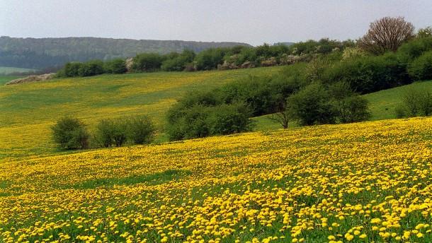 UNESCO-Biosphärenreservat Rhön