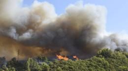 Griechische Feuerwehr kämpft gegen Flammen an