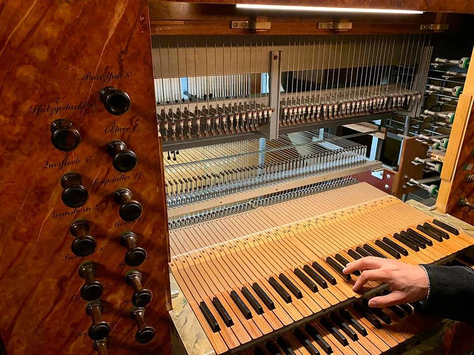 Kreienbrink-Orgel in der Kirche St. Wiho