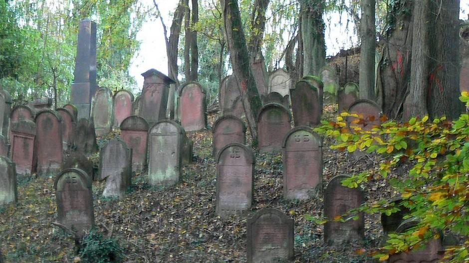 Gut 1000 Gräber: Der jüdische Friedhof von Hemsbach.