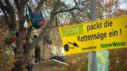 Aktivisten besetzen Bäume vor hessischer Grünen-Zentrale