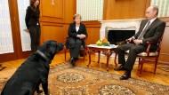 Treffen zwischen Angela Merkel und Wladimir Putin – und dessen Labrador Koni