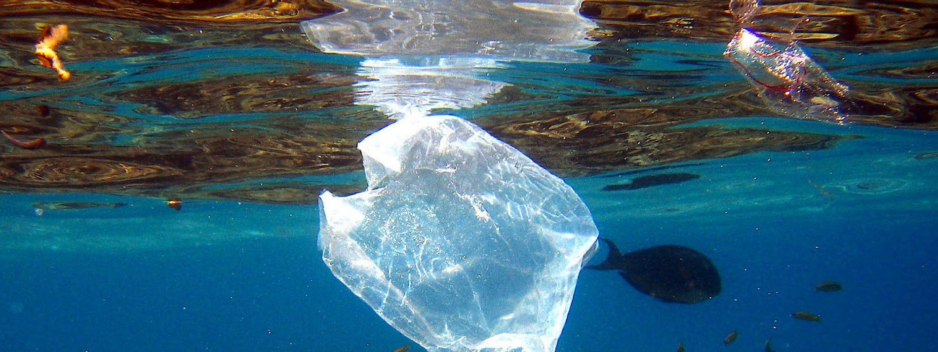 Wie Kunststoffe die Umwelt belasten