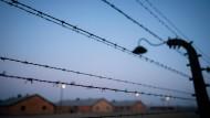 Der Stacheldrahtzaun des früheren Vernichtungslagers Auschwitz-Birkenau.