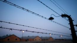 Die Lehren aus Auschwitz
