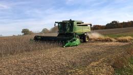 Unruhe am Monsanto Drive