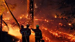 Waldbrand treibt Camper in die Flucht