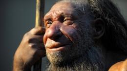 Die Neandertaler haben sich hauptsächlich von Fleisch ernährt