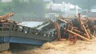 Tod und Verwüstung durch Taifune