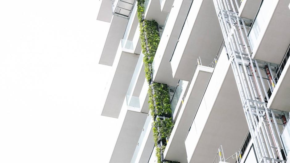 Ein Fall für die Heckenschere: Die Pflanzen am Eden Tower müssen regelmäßig gestutzt werden. Über Schläuche erhalten sie Wasser und Nährstoffe.