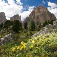 Südtirol, hier das Sellajoch in den Dolomiten, gehört zu Italien, Nordtirol zu Österreich.