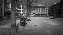In der Stille der Stadt
