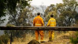 Buschbrände wüten im Südosten Australiens