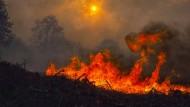 Tödliches Feuerinferno: Portugal und Spanien werden von schweren Bränden erschüttert.