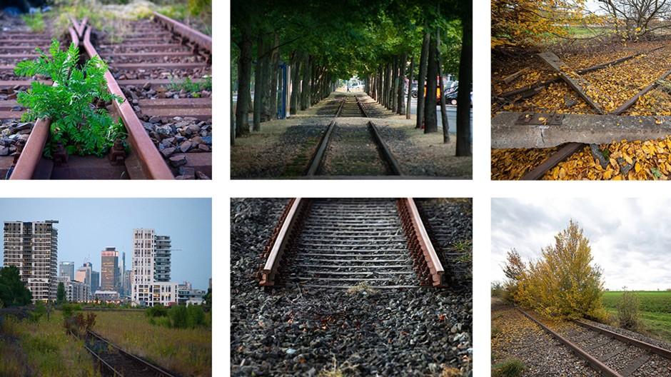 Wenn der Zug für immer abgefahren ist: Sanftes Grün zieht sich über die Eisenbahnschienen, die Natur setzt sich gegen Schotter und Stahl durch. Die Erweckung rostiger Schienen aus ihrem Dornröschenschlaf ist aufwendig und teuer.