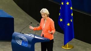 Ausschuss im Europaparlament für Klage gegen Kommission