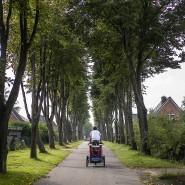 Die Straße frei – das war in Hamburg ein eher seltenes Vergnügen.
