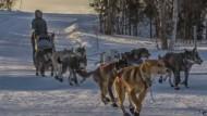Winterreise in Alaska: Die Musherin Katherine Keith erreicht den Checkpoint in Huslia.