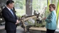 Beobachtungsobjekte: Xi Jinping und Angela Merkel hinter Glas