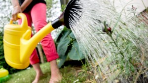 Gießen ohne Abwassergebühr