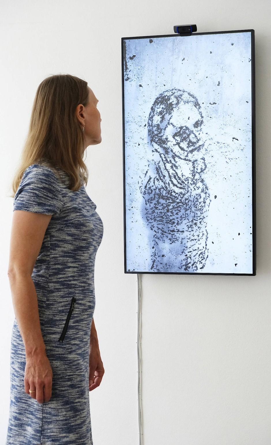 """Das große digitale Krabbeln: """"Homo Insectus"""" von Laurent Mignonneau  und Christa Sommerer"""